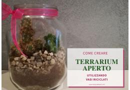 Come creare un terrarium aperto utilizzando vasi riciclati 24/06/2021